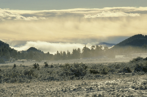 Loneliness「fog and snow panorama, rocky mountain np, usa」:スマホ壁紙(10)
