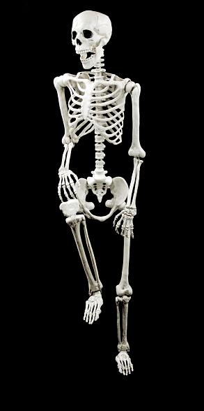Fitness model「white model skeleton with black background」:スマホ壁紙(13)