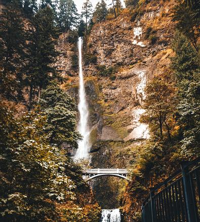 Vibrant Color「秋にオレゴン州マルトノマ滝」:スマホ壁紙(4)