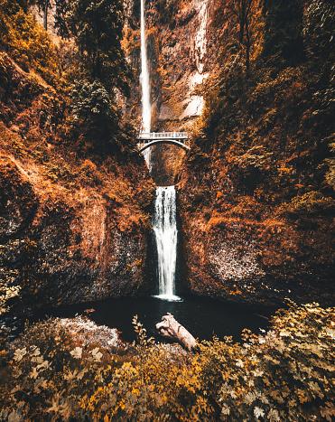 Vibrant Color「秋にオレゴン州マルトノマ滝」:スマホ壁紙(5)