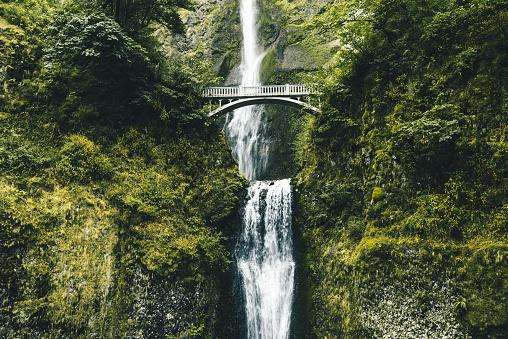 Vibrant Color「モルトノマ滝でオレゴン」:スマホ壁紙(2)