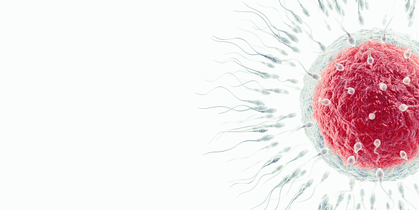 Biology「Insemination」:スマホ壁紙(9)