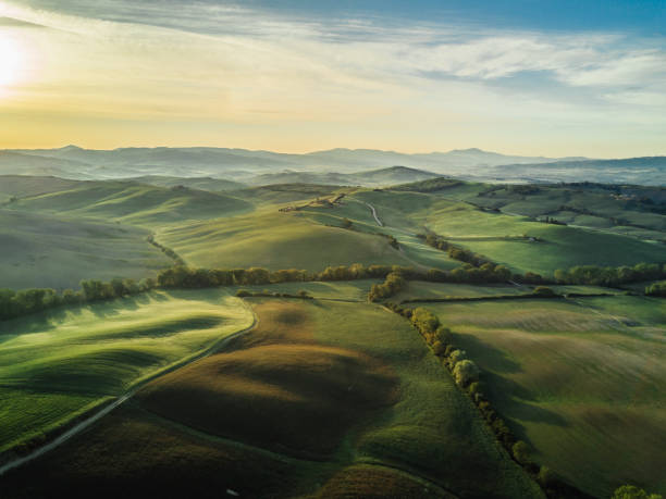 Tuscany landscape at sunrise with low fog:スマホ壁紙(壁紙.com)