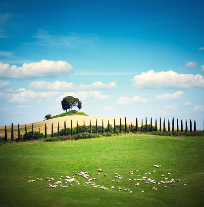 Val d'Orcia「Tuscany Landscape」:スマホ壁紙(10)