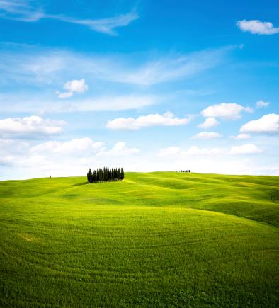 Springtime「Tuscany Landscape」:スマホ壁紙(17)
