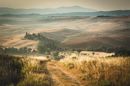 Treelined「Tuscany Landscape At Sunset」:スマホ壁紙(18)