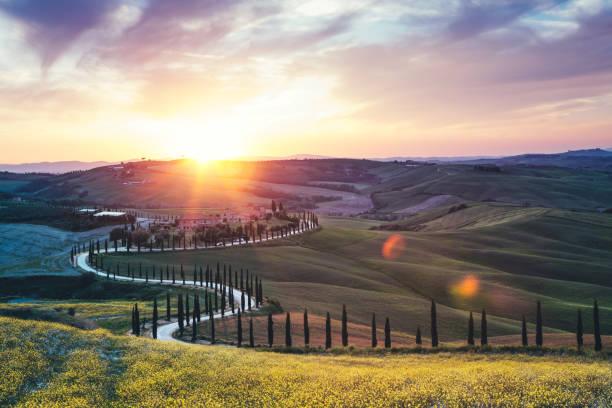 Tuscany Landscape With Winding Road:スマホ壁紙(壁紙.com)