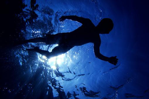 自生「Floating on Water」:スマホ壁紙(13)