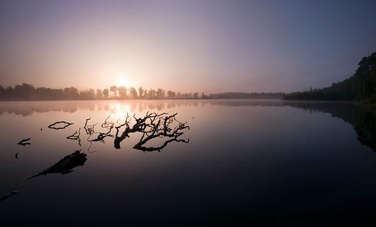 North Brabant「Magical sunrise at lake in the Netherlands」:スマホ壁紙(6)