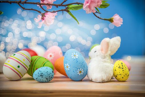 Chocolate Easter Egg「Easter Eggs and White Bunny」:スマホ壁紙(11)