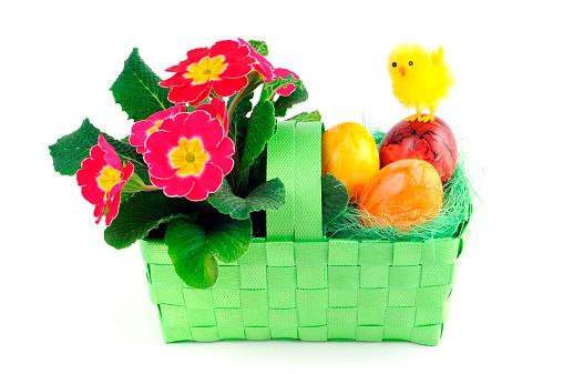 イースター「イースター卵にピンクプリムラ Primrose チキンのグリーンのバスケット」:スマホ壁紙(4)