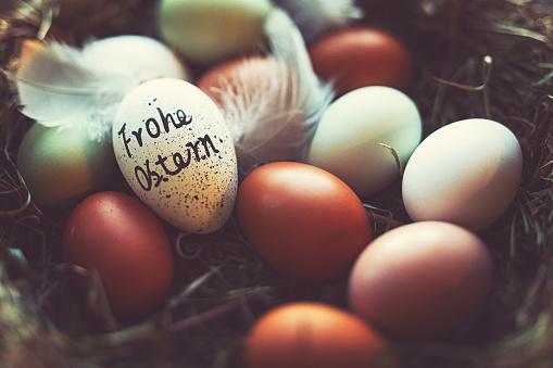 "Animal Egg「Easter eggs with German lettering ""Happy Easter""」:スマホ壁紙(11)"