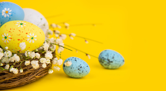 Easter「Easter Eggs in a Nest on Yellow Background」:スマホ壁紙(14)