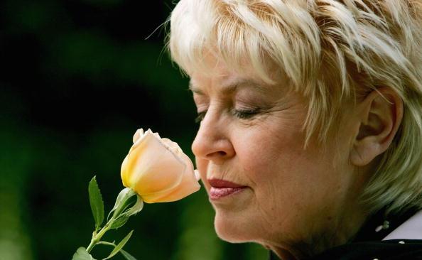 Breast「Chelsea Flower Show」:写真・画像(1)[壁紙.com]