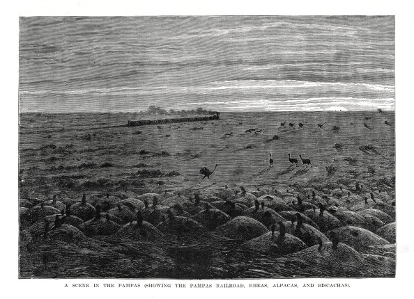 Pampas「The Pampas railroad, South American lowlands, 1877.」:写真・画像(18)[壁紙.com]
