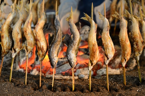 Nikko City「Grilling salted freshwater fishes」:スマホ壁紙(17)