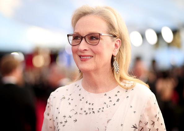 Meryl Streep「The 23rd Annual Screen Actors Guild Awards - Red Carpet」:写真・画像(16)[壁紙.com]