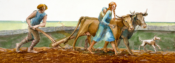 Farm「Ploughing, Iron Age, (c1990-2010)」:写真・画像(7)[壁紙.com]