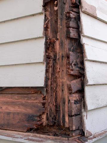 Deterioration「Wood Damage」:スマホ壁紙(5)