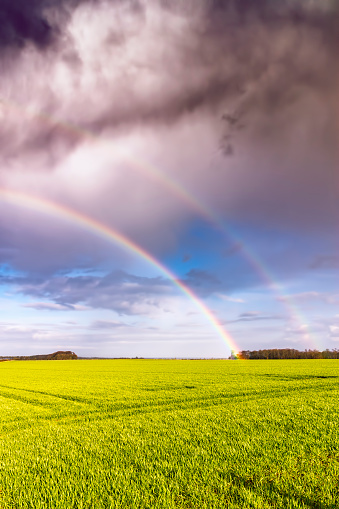 East Lothian「UK, Scotland, North Berwick, rainbow over a field」:スマホ壁紙(13)