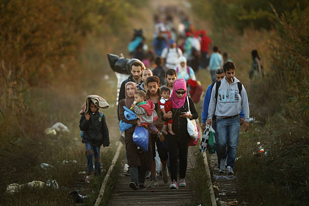 Migrants Make Their Way Towards Hungary:ニュース(壁紙.com)