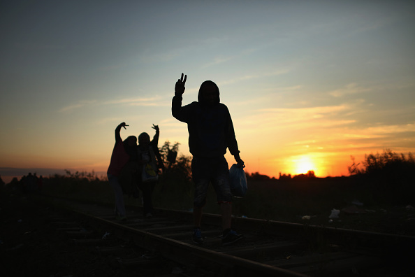 Lighting Technique「Migrants Make Their Way Towards Hungary」:写真・画像(4)[壁紙.com]