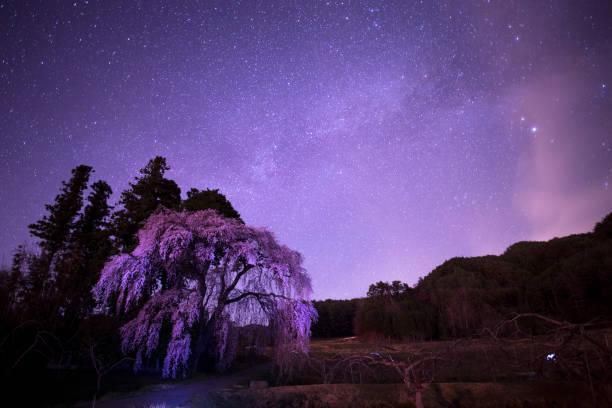 Starry Night:スマホ壁紙(壁紙.com)