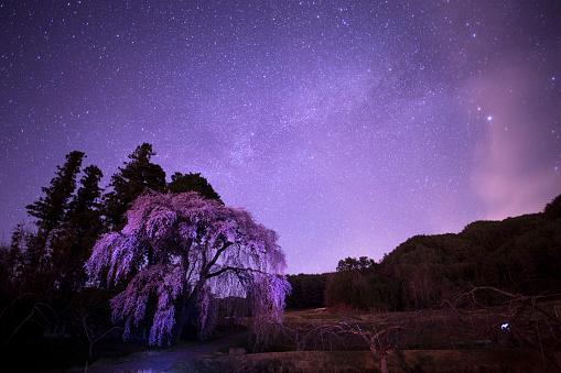 星空「Starry Night」:スマホ壁紙(1)