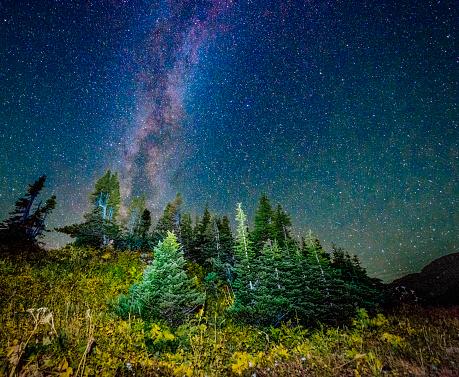 star sky「星空の夜の氷河国立公園モンタナローパス」:スマホ壁紙(4)