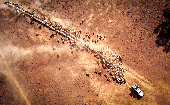 Drone Point of View「Farmers Continue To Struggle As NSW Suffers Through Worst Drought On Record」:写真・画像(3)[壁紙.com]