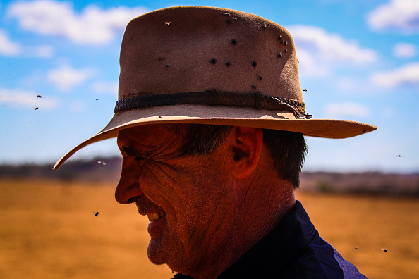Weather「Farmers Continue To Struggle As NSW Suffers Through Worst Drought On Record」:写真・画像(3)[壁紙.com]