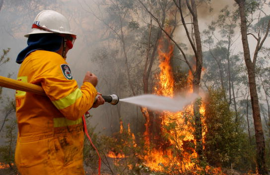 オーストラリア「Sydney Bushfires」:写真・画像(11)[壁紙.com]