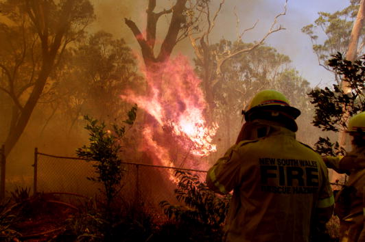 Inferno「Sydney Bush Fires」:写真・画像(2)[壁紙.com]