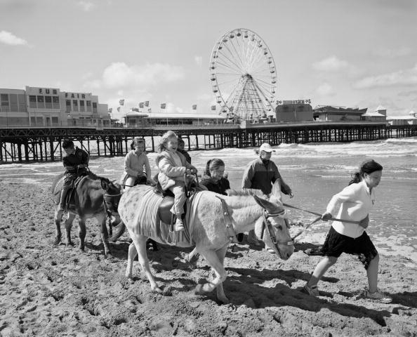 Tom Stoddart Archive「Blackpool Donkey Ride」:写真・画像(18)[壁紙.com]