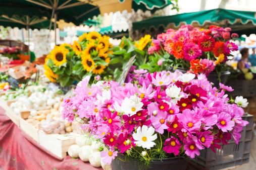 Market Stall「Provencal market」:スマホ壁紙(16)
