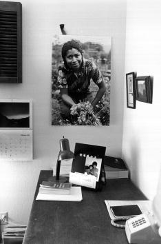 """Pulitzer Prize「Alice Walker is the author of the famous novel """"The Color Purple""""...」:写真・画像(7)[壁紙.com]"""