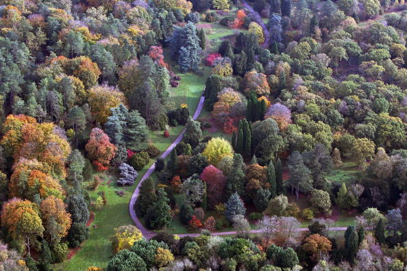 Footpath「First Signs Of Autumn In The UK」:写真・画像(16)[壁紙.com]