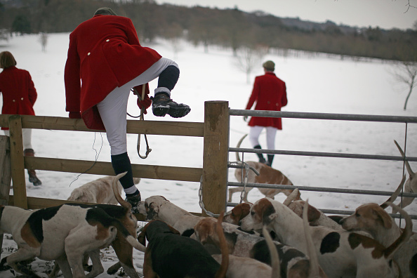 Christopher Furlong「Members Of the Hagley Hunt Ride Out On Boxing Day」:写真・画像(9)[壁紙.com]