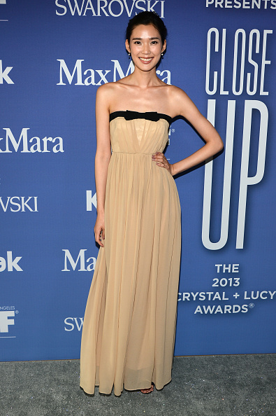 The Beverly Hilton Hotel「Women In Film's 2013 Crystal + Lucy Awards - Arrivals」:写真・画像(3)[壁紙.com]