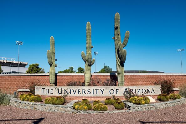 University「University Of Arizona」:写真・画像(19)[壁紙.com]