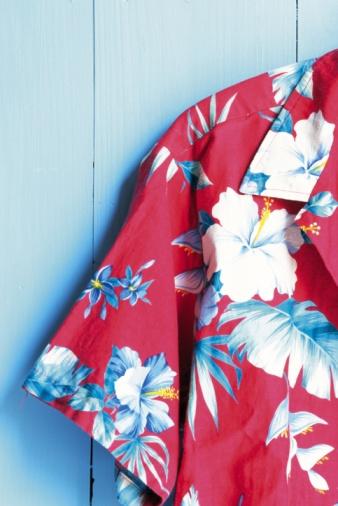 Floral Pattern「Photography of a Hawaiian shirt, Front View」:スマホ壁紙(19)