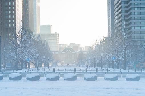 吹雪「The next morning of winter snowstorm at Marunouchi Chiyoda-ku Tokyo Japan – January. 23 2018. The morning sun illuminates the snow-covered cityscape, which are sky, lines of ginkgo trees, street and skyscrapers around the Tokyo Station.」:スマホ壁紙(18)