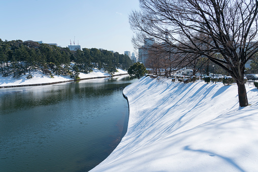 Japanese Royalty「The next morning of winter snowstorm at Chiyoda-ku Tokyo Japan – January. 23 2018. Snowy Imperial Palace Moat along the Uchibori-dori.」:スマホ壁紙(5)