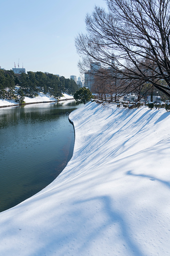 Japanese Royalty「The next morning of winter snowstorm at Chiyoda-ku Tokyo Japan – January. 23 2018. Snowy Imperial Palace Moat along the Uchibori-dori.」:スマホ壁紙(6)