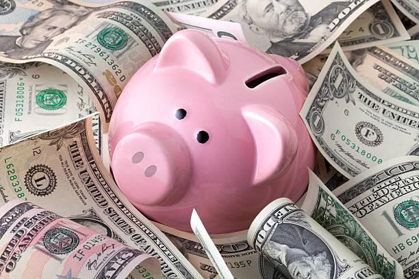 Piggy bank with dollars banknotes:スマホ壁紙(壁紙.com)
