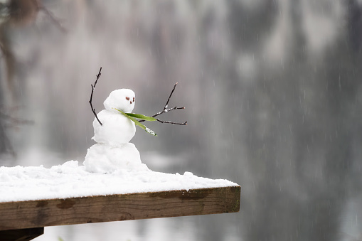雪だるま「Miniature snowman」:スマホ壁紙(2)