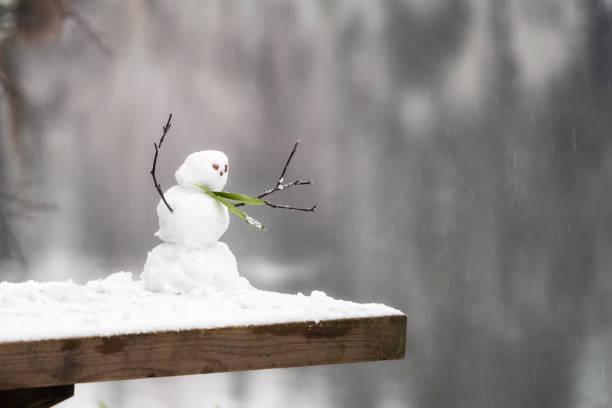 Miniature snowman:スマホ壁紙(壁紙.com)