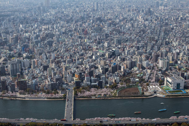 Views From The Skytree:ニュース(壁紙.com)
