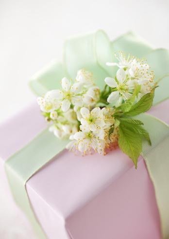 Cherry Blossom「Gift box」:スマホ壁紙(8)