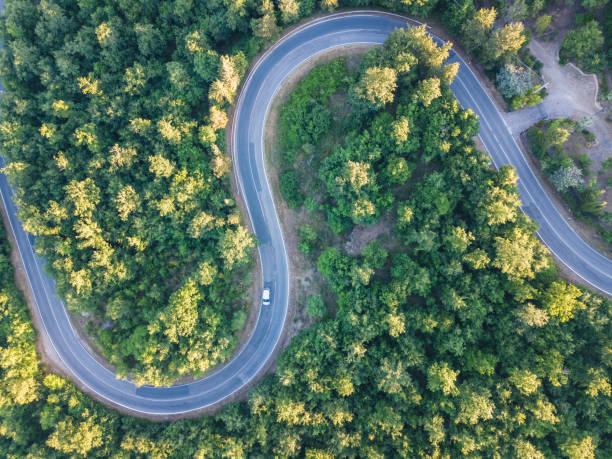 Road trip through a forest - Aerial point of view:スマホ壁紙(壁紙.com)